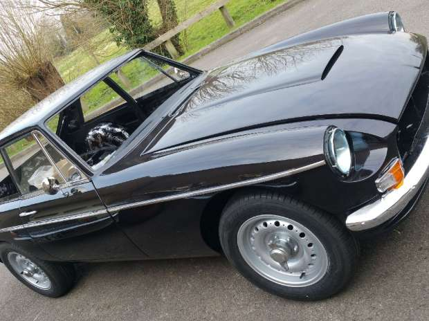 MG Abingdon Edition Speed Back